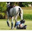 Обучение спортсменов и специалистов конноспортивных организаций оказанию первой помощи при несчастном случае и травмах